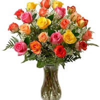 24 Long Stem Multicolored Roses