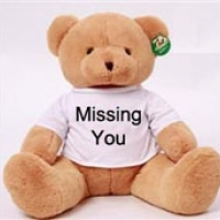 "24"" Brown Teddy Bear with Missing you T-shirt."