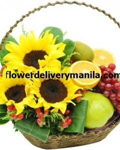 6 items fruits & sunflower