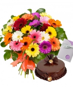 20 mix colour gerberas with cake