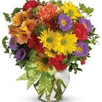 Colored flowers mix